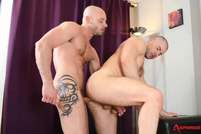 Bruno-Fox-and-Yohan-Banks-Alphamales-gay-porn-star-muscle-hunk-ass-fuck-man-hole-muscle-gay-sex-asshole-fucking-anal-01-gay-porn-reviews-pics-gallery-tube-video-photo