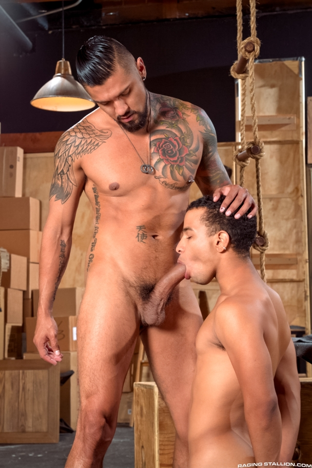 Boomer-Banks-and-Trelino-Raging-Stallion-gay-porn-stars-gay-streaming-porn-movies-gay-video-on-demand-gay-vod-premium-gay-sites-004-male-tube-red-tube-gallery-photo