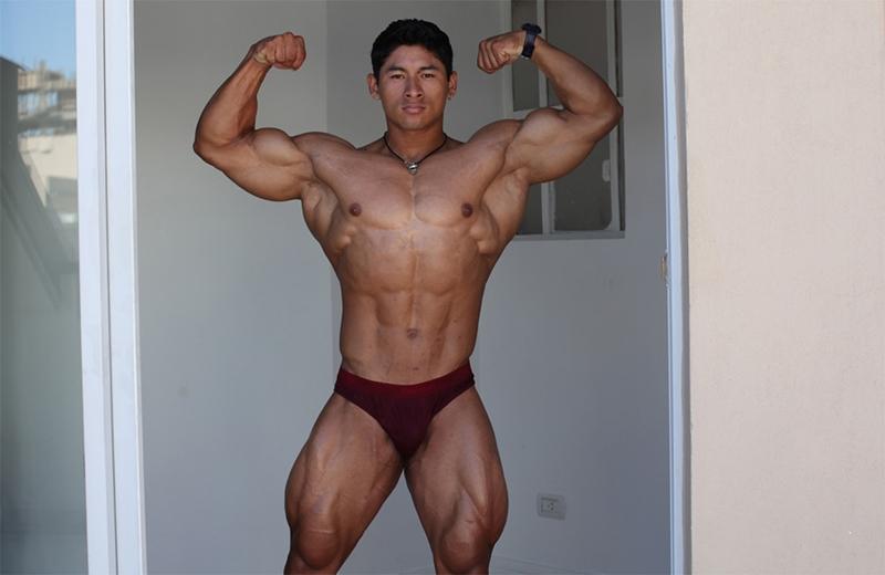 free gay muscular