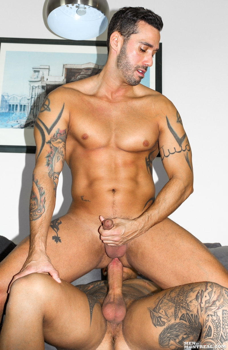 gay dreams 2 raging stallion