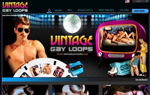 vintagegayloops